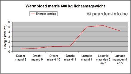 grafiek-voeding-energie